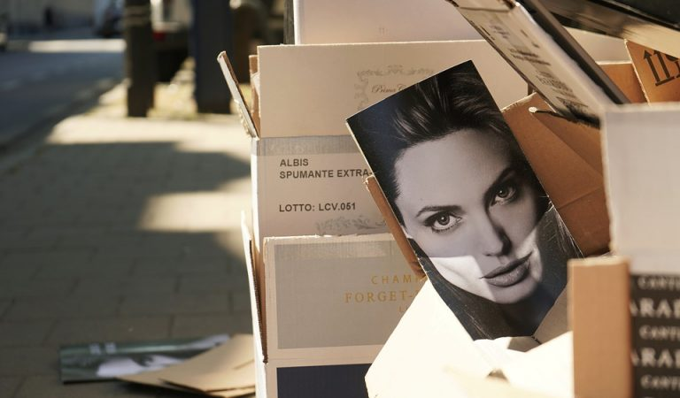 Angelina Jolie's Life History, Career, Achievements, and Net Worth