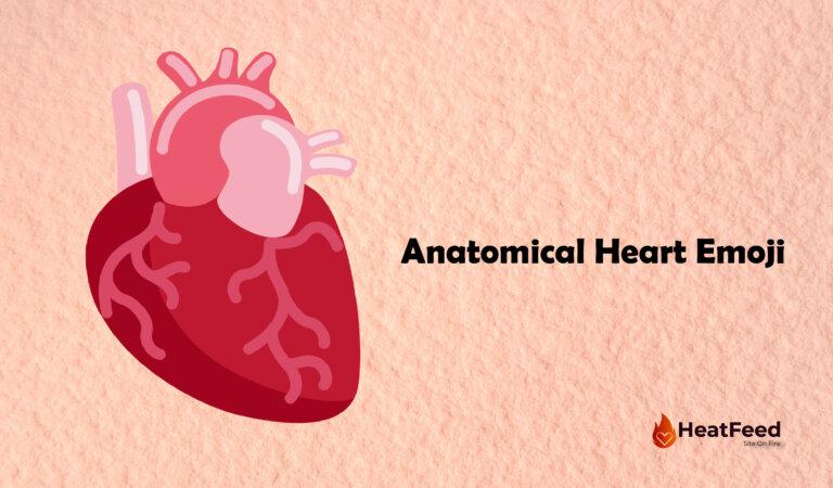 Anatomical Heart Emoji