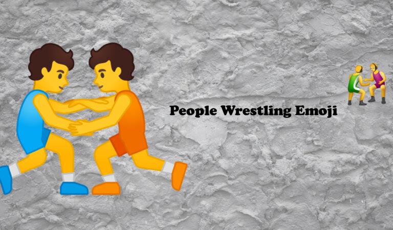 🤼 People Wrestling Emoji
