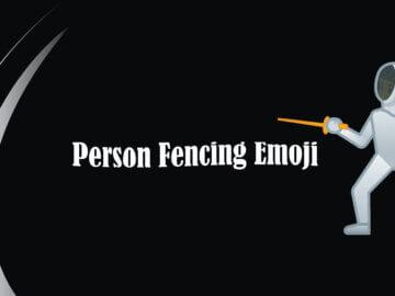person fencing
