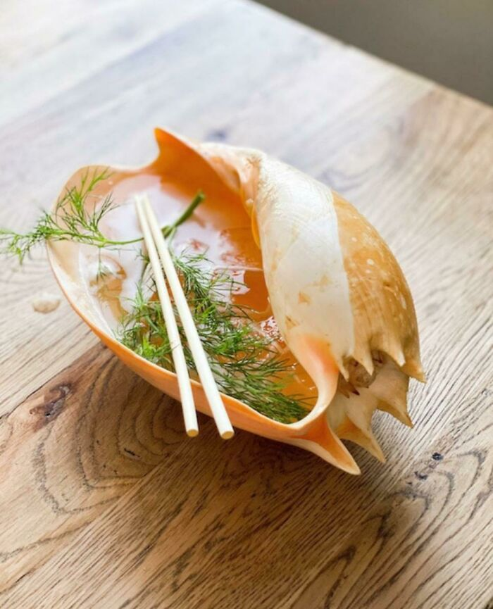 shell food serving