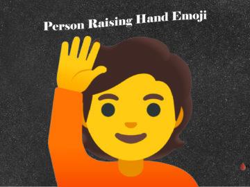 Person Raising Hand Emoji