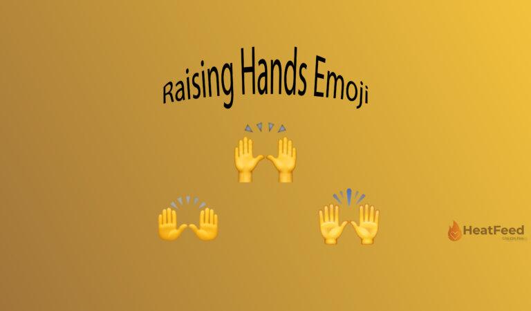✋Raised Hand Emoji