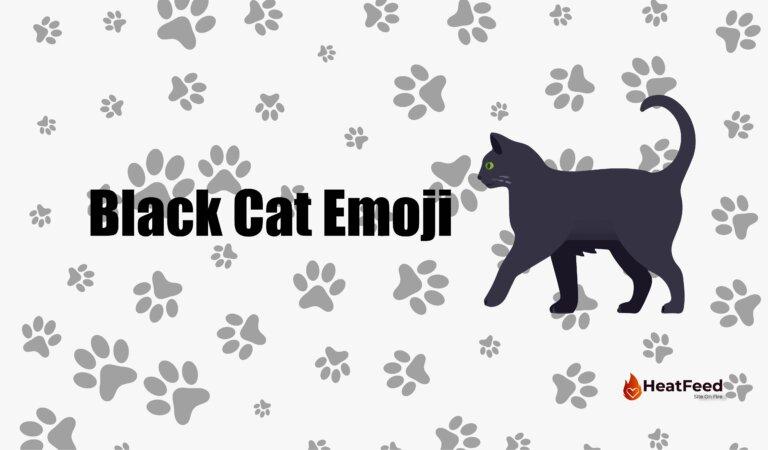 🐈⬛Black Cat Emoji