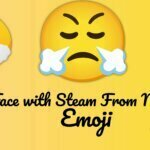Face with Steam From Nose Emoji