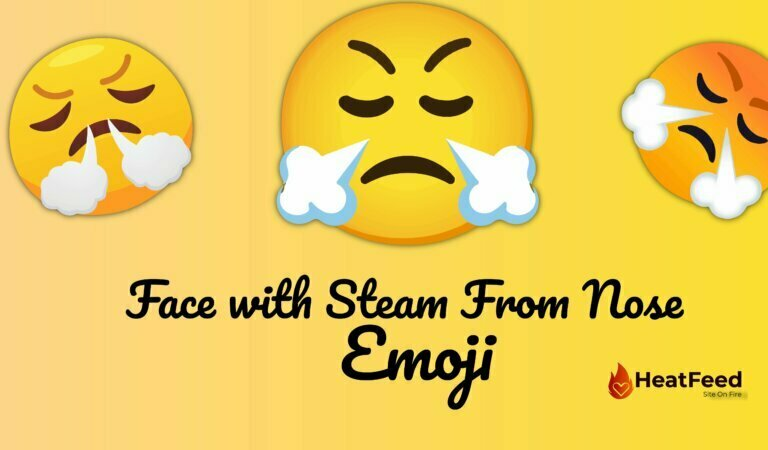 😤 Face With Steam From Nose Emoji