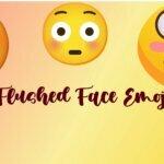 Flushed Face Emoji