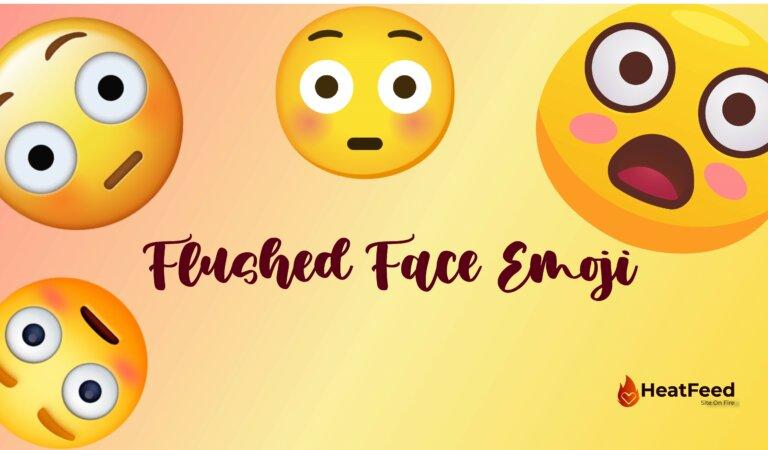 😳 Flushed Face Emoji