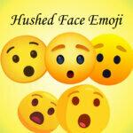 Hushed Face Emoji