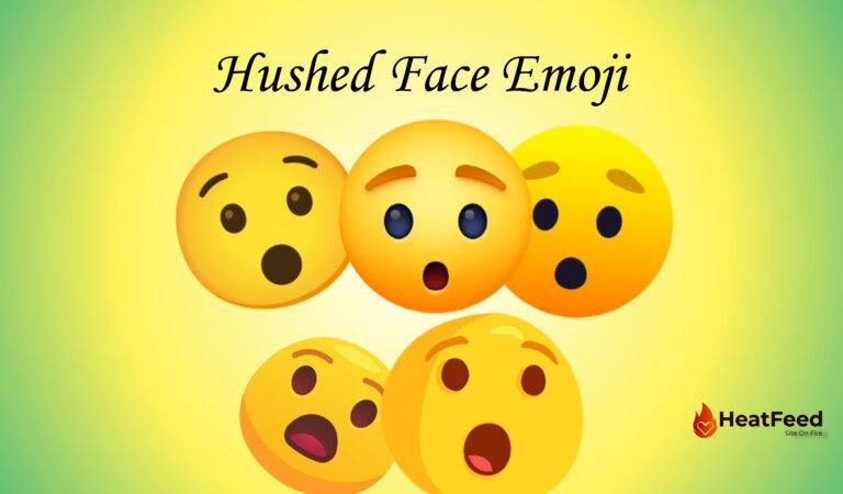 😯 Hushed Face Emoji