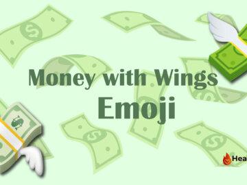 money with wings emoji