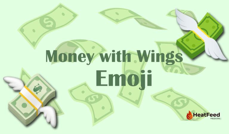 💸 Money with Wings Emoji