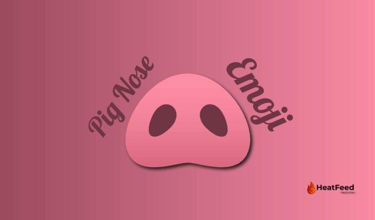 🐽Pig Nose Emoji