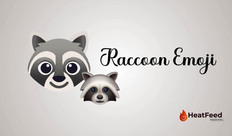 🦝 Raccoon Emoji