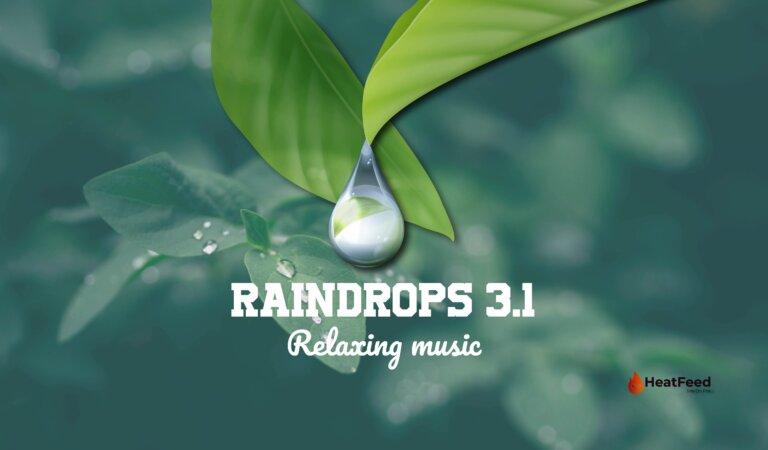 Raindrops 3.1