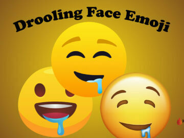 Drooling Face Emoji
