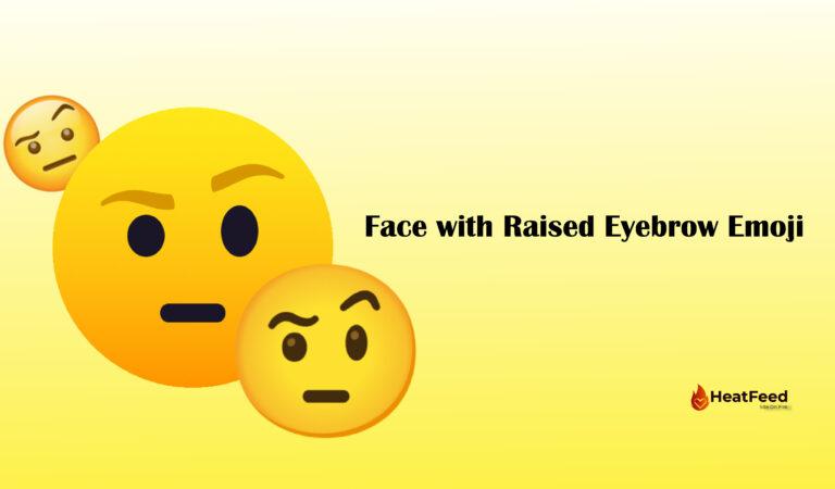 🤨 Face with Raised Eyebrow Emoji